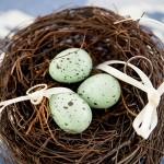 porta alianças ninho 2